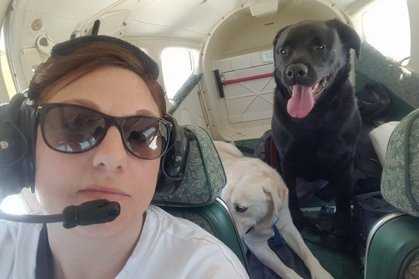 bronco-and-foster-on-board-flight
